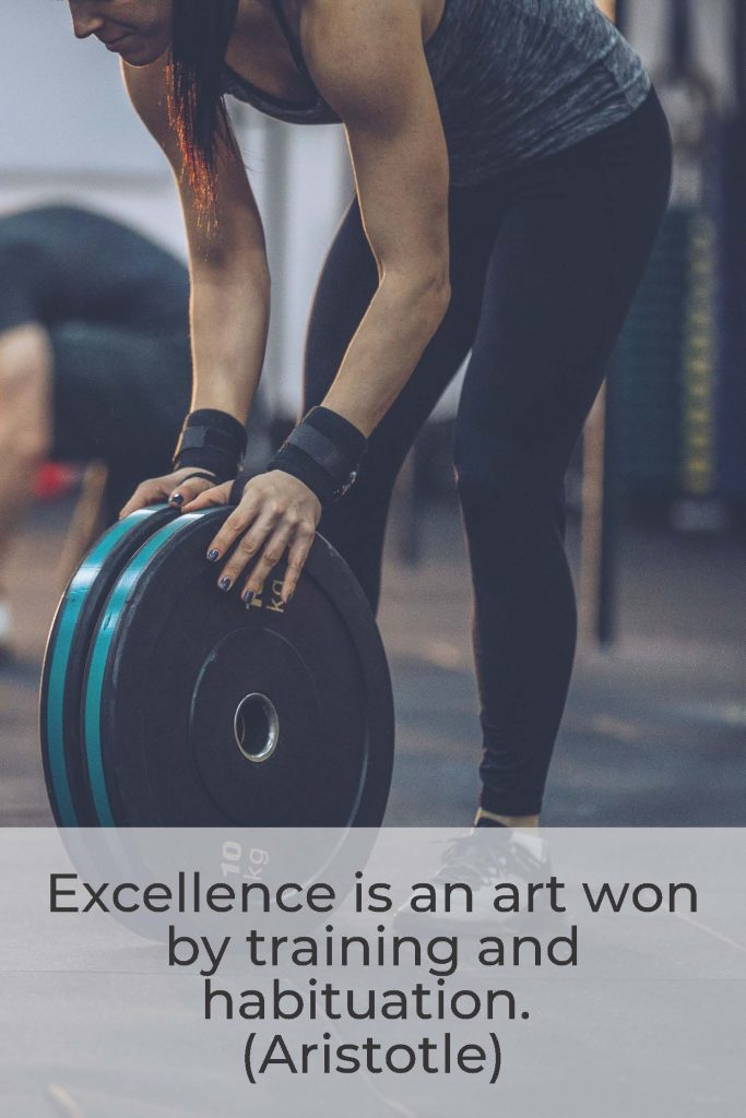 HodgeonRepeat blog - Aristotle quote -excellence is won by training