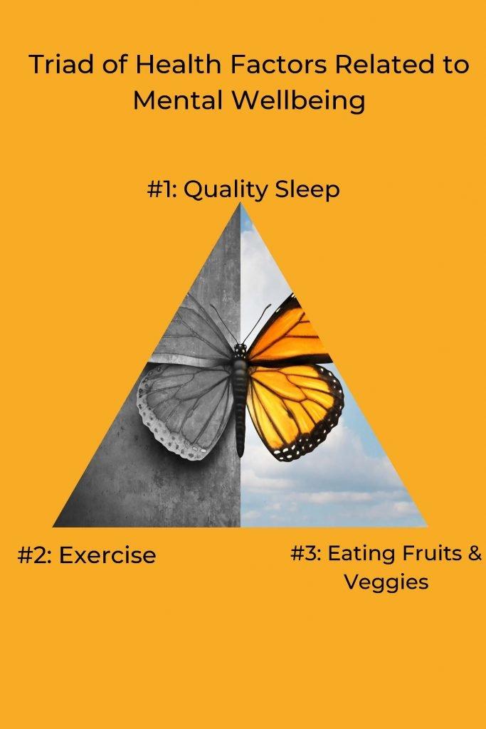 HodgeonRepeat blog - triangle diagram health triad for mental health wellbeing