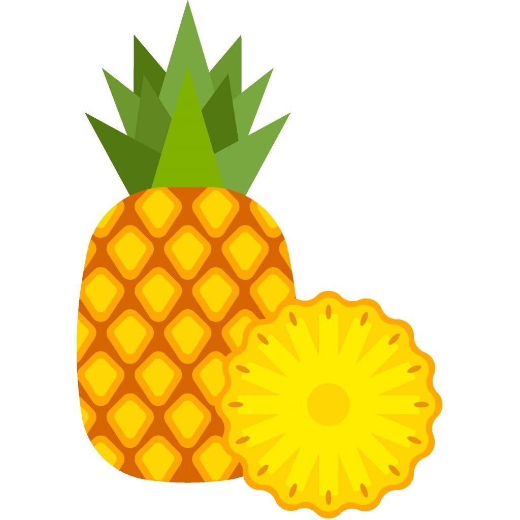 HodgeonRepeat pineapple icon